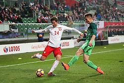 14.11.2016, Stadion Miejski, Wroclaw, POL, Testspiel, Polen vs Slowenien, im Bild BARTOSZ BERESZYNSKI GREGOR SIKOSEK // during the international friendly football match between Poland vs Slovenia at the Stadion Miejski in Wroclaw, Poland on 2016/11/14. EXPA Pictures &copy; 2016, PhotoCredit: EXPA/ Newspix/ Piotr Kucza<br /> <br /> *****ATTENTION - for AUT, SLO, CRO, SRB, BIH, MAZ, TUR, SUI, SWE, ITA only*****