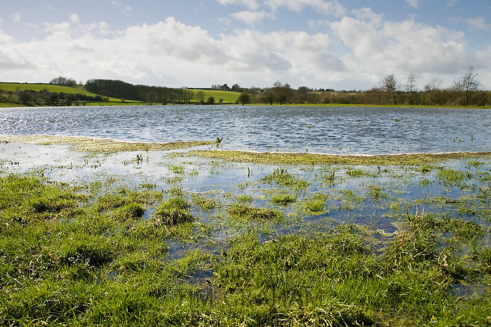 Flooded watermeadows in flood plain, near Burford, Oxfordshire, The Cotwolds, England,  United Kingdom