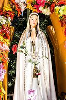 Gruta de Fátima. São José do Cedro, Santa Catarina, Brasil. / Sanctuary to Our Lady of Fatima. Sao Jose do Cedro, Santa Catarina, Brazil.