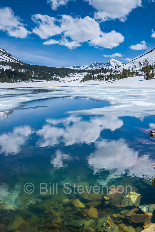 Ellery Lake in Yosemite National Park in early spring..