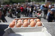 Vorbereitete Eier während dem Wahlkampfauftritt zur Europawahl der Oppositionspartei CSSD in Tschechien im Prager Stadtteil Vinohrady. Prag, Tschechische Republik, den 27.05.2009, Foto: Björn Steinz