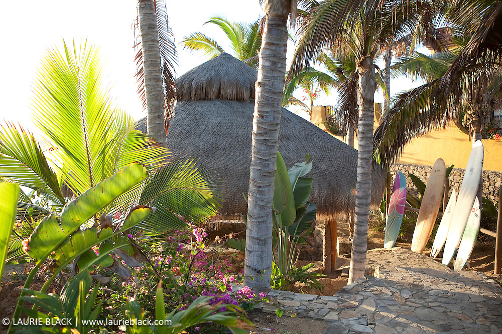 Tropical garden palapa with surfboards