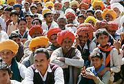 Group of Rajasthani men attending traditional gathering, Rajasthan, India