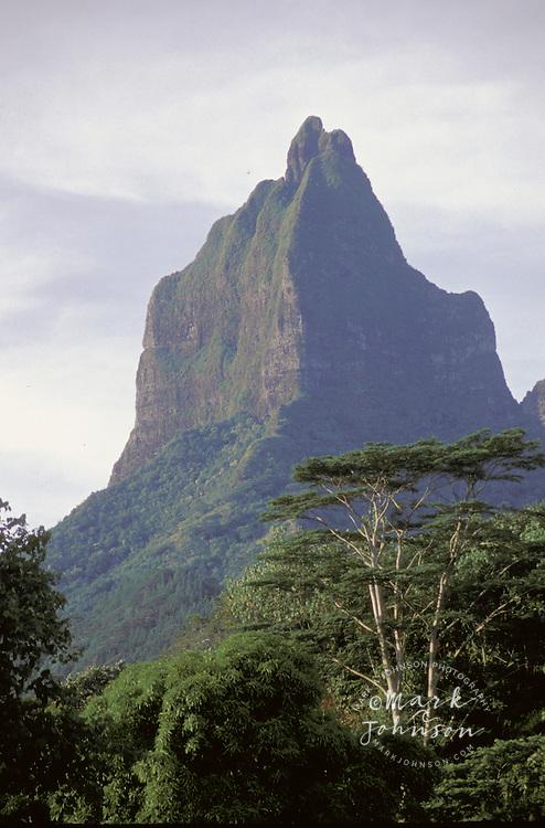 Moua Roa, Moorea, French Polynesia