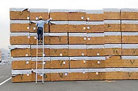Japanese worker marking imported wood in Tokyo harbor.