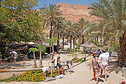 Israel, Dead Sea, Ein Gedi Resort and Spa