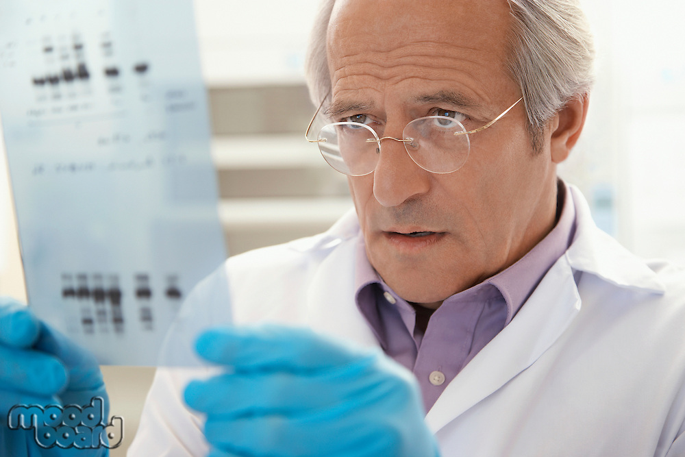 Scientist looking at DNA test results indoors