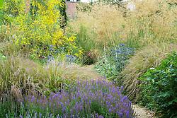 Borders of grasses and perennials at Broughton Grange including Stipa gigantea