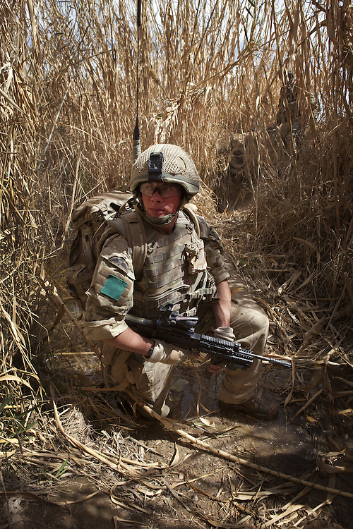 British soldiers of 3PARA move across open fields and through crops whilst on patrol in Nad Ali, Hemand Province, Afghanistan on the 11th of March 2011.
