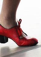 Jose Mateo Ballet Theatre's Dance for World Community Festival. Harvard Square. Cambridge, MA.<br /> www.flamencoboston.com