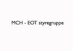 20170329 MCH - EOT Styregruppe