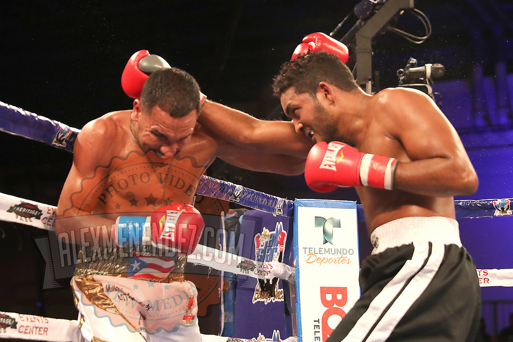 Gerald Semidy (L) fights Yasmani Pedroso during a Telemundo boxing match at Osceola Heritage Park on Friday, July 20, 2018 in Kissimmee, Florida.  (Alex Menendez via AP)