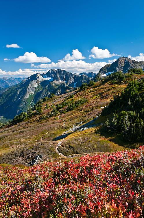 Sahale Arm Trail, Cascade Pass, North Cascades National Park, Washington.