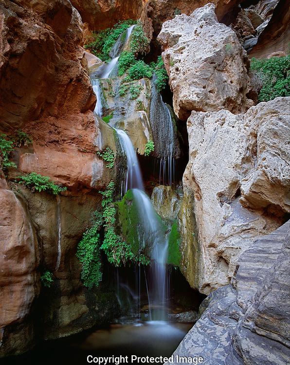 Elves Chasm waterfall, Grand Canyon AZ