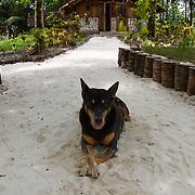Walkabout 7D / 4 Bobs / A Frames at Kandui, Kandui, Mentawais Islands, Indonesia March  26, 2013.
