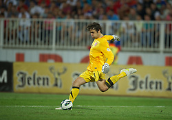 NOVI SAD, SERBIA - Tuesday, September 11, 2012: Serbia's goalkeeper Vladimir Stojkovic in action against Wales during the 2014 FIFA World Cup Brazil Qualifying Group A match at the Karadorde Stadium. (Pic by David Rawcliffe/Propaganda)
