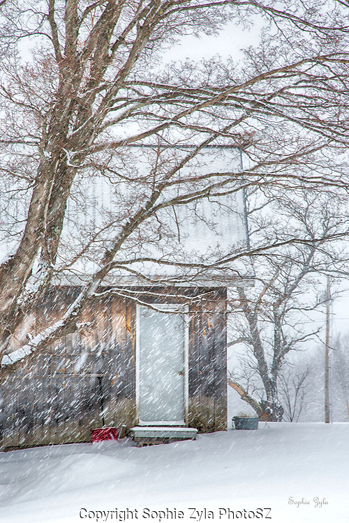 Red Shovel Ready for VT Snow