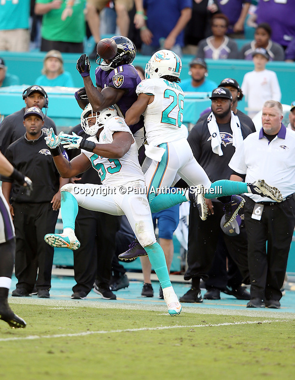 Baltimore Ravens wide receiver Kamar Aiken (11) leaps while trying to catch a pass while covered by Miami Dolphins outside linebacker Jelani Jenkins (53) and Miami Dolphins cornerback Bobby McCain (28) during the 2015 week 13 regular season NFL football game against the Miami Dolphins on Sunday, Dec. 6, 2015 in Miami Gardens, Fla. The Dolphins won the game 15-13. (©Paul Anthony Spinelli)
