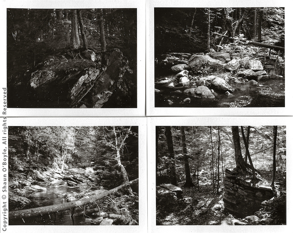 Walk along Wahconah Falls Brook,<br />
