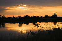 Lagoon at sunset, Camargue, France