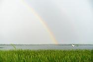 https://Duncan.co/rainbow-and-bobs-island