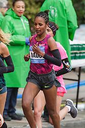 NYC Marathon, Dado