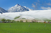 Spring snowfall in the Wallowa Valley of Northeast Oregon