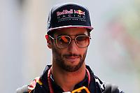 Monza - Formula 1 - Gran Premio d' Italia di Formula 1 - Nella foto: Daniel Ricciardo - Red Bull