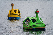 Swan pedal boats on Lake Chuzenji (Chuzenjiko), a scenic lake in the mountains above the town of Nikko, in Tochigi Prefecture, Japan. It's at the foot of Mount Nantai, Nikko's sacred volcano, whose eruption blocked the valley below, thereby creating Lake Chuzenji 20,000 years ago. Chuzenjiko's shores are mostly undeveloped and forested except at the eastern end where the growing hot spring town of Chuzenjiko Onsen was built. Chuzenjiko is especially beautiful in mid to late October, when the autumn colors reach their peak along the lake's shores and surrounding mountains. See panoramic views of Lake Chuzenji along the Chuzenjiko Skyline, an eight kilometer long former toll road accessible by bus or car, which also connects to scenic hiking trails.