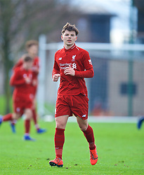 KIRKBY, ENGLAND - Saturday, January 26, 2019: Liverpool's Bobby Duncan during the FA Premier League match between Liverpool FC and Manchester United FC at The Academy. (Pic by David Rawcliffe/Propaganda)