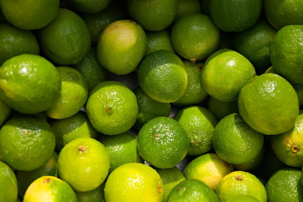 Früchte,Zitronen in einer Kiste, ,Lemonen, Frucht ,Zitrusfrucht,    |  lemons in a box