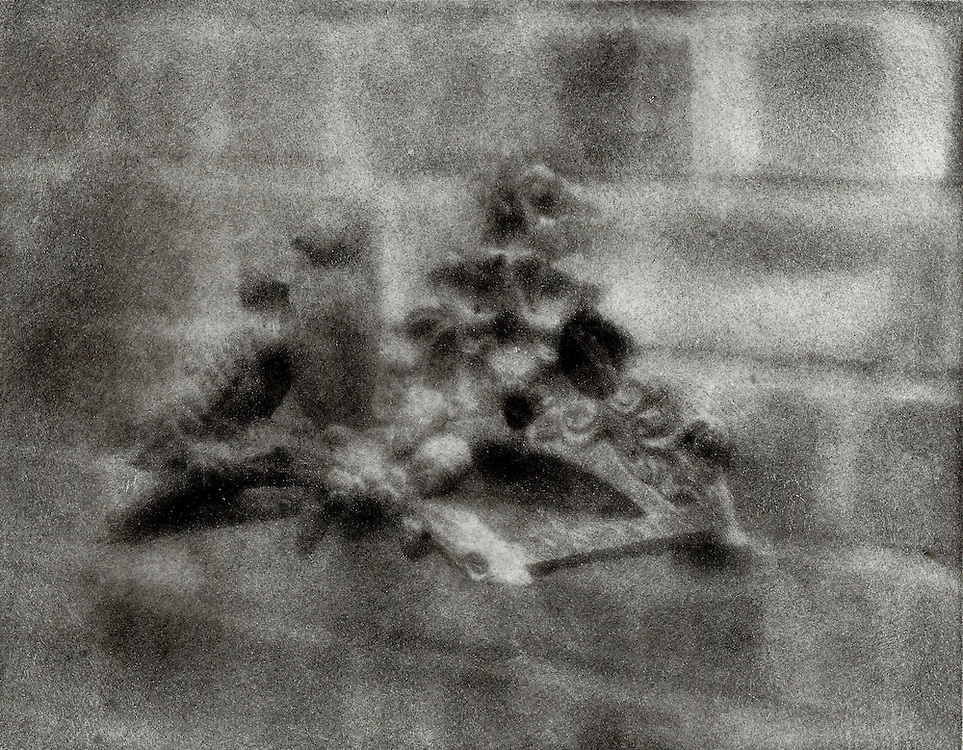 Two birds form the sides of a hose storage system on a brick wall. This image was created using the Bromoil process.