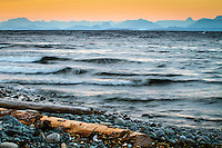 The seemingly endless stretches of beaches, the rhythmic sound of the waves, and a clear beautiful sunset are some of the things that make the Comox Valley a beautiful place to be!