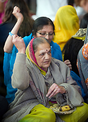 "© under license to London News pictures.  06/11/2010.Women throw seed over their sholders during Celebrations for Diwali, the Hindu new year, at Gokul Centre for Cow Protection and Working Oxen in Aldenham near Watford, Hertfordshire today (Sat). The centre, which was originally donated by George Harrison, is unique in the western world producing ""Ahimsa Milk"" at a cost of £3 per litre without harm to any living being. The Centre is part of Bhaktivedanta Manor, a Hindu place of worship."