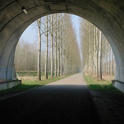 Best, Noord Brabant, Netherlands