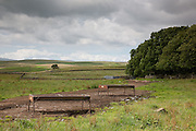 Two cattle feeders in the landscape Balmurrie, Scotland