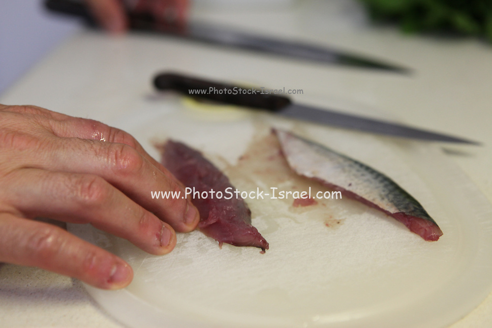 Chef filleting mackerel