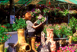 Stock photo of a woman browsing at a local nursery