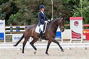 Sandy van Boxmeer - Fernando<br /> Dressage at Blom 2016<br /> © DigiShots