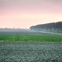 """Nederland,Emmadorp,Land van Saaftingen ,16 december 2007..Ondergaande zon in de Hertogin Hedwigepolder..Het Verdronken Land van Saeftinghe is een getijdengebied aan de uiterste oostkant van Zeeuws-Vlaanderen op de grens met België enkele kilometers stroomafwaarts van Antwerpen in het estuarium van de Schelde. Het gebied heeft een oppervlakte van 3484 hectare dat grenst aan het water van de Westerschelde. Ongeveer 70% van dat oppervlak is begroeid met schorplanten. De rest bestaat uit zandplaten, slikken en geulenstelsels..Saeftinghe is een Zeeuws natuurmonument van grote klasse en tegelijk ook een soort van open lucht tentoonstelling: nergens anders meer in West-Europa is op zo'n grote schaal te zien en te ervaren hoe het Deltagebied is ontstaan en is geboetseerd uit de elementen schor, slik en zand. .Ieder tij overspoelt het brakke water een groot deel van het gebied. De flora is hieraan geheel aangepast en uniek. Voor duizenden vogels is Saeftinghe een gebied van internationaal belang. Niet alleen als broedgebied, maar ook als overwinterings- en rustgebied. Sunset in the Hertogin Hedwigepolder..The polder is due to be """"given back"""" to nature, let the sea in and drown it."""