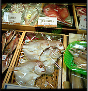 Fish for sale in a Tokyo department store, Japan.
