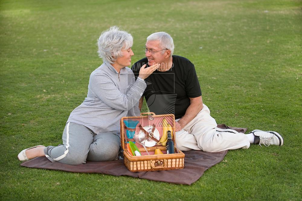 Senior couple enjoying a romantic picnic