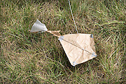 self made kite laying in the grass