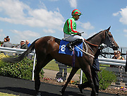 Jockey Silvestre de Sousa on Rhythmical in the Parade Ring before the 2.20 race at Brighton Racecourse, Brighton & Hove, United Kingdom on 10 June 2015. Photo by Bennett Dean.