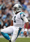 Carolina Panthers quarterback Cam Newton (1) celebrates after running for a third quarter gain of 9 yards during the 2015 NFL week 3 regular season football game against the New Orleans Saints on Sunday, Sept. 27, 2015 in Charlotte, N.C. The Panthers won the game 27-22. (©Paul Anthony Spinelli)