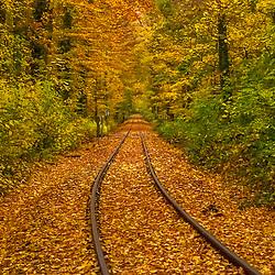 Trilho de trem no  Parque de animais Lindenthaler (Colônia) fotografado em Colônia, na Alemanha. Registro feito em 2009.<br /> ⠀<br /> <br /> <br /> ENGLISH: Rail road in the Lindenthal Animal Park photographed Cologne, Germany. Picture made in 2009.
