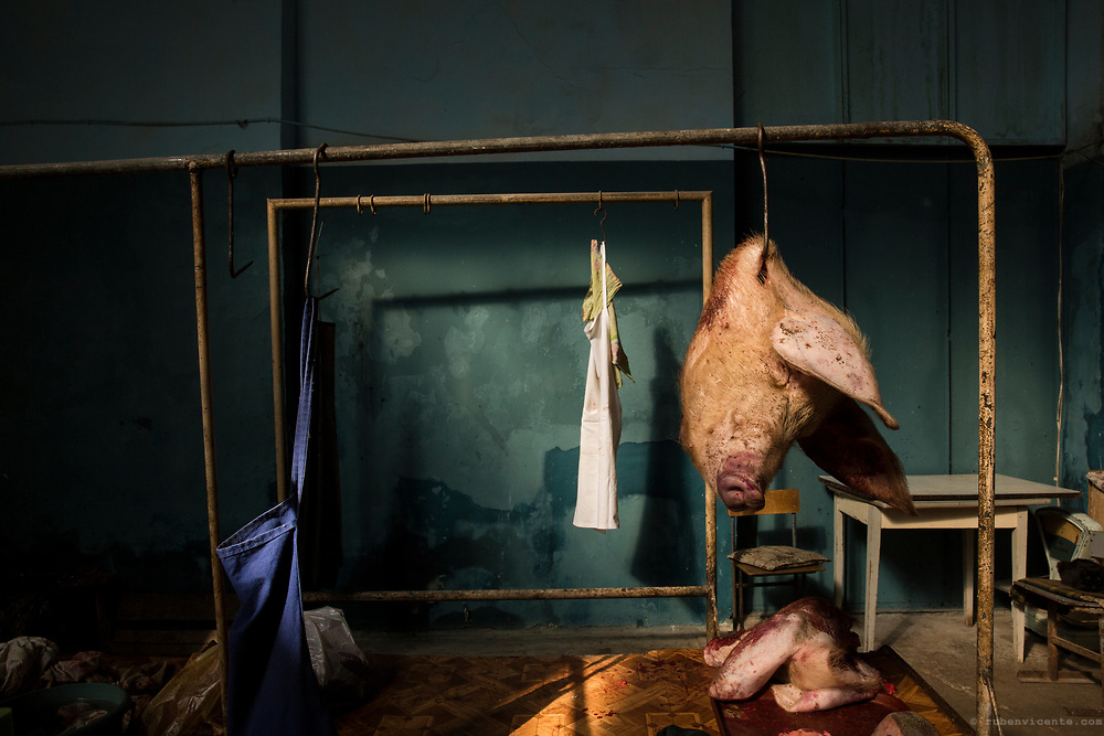 Pig head hanging in Gyumri's market butchery. Armenia