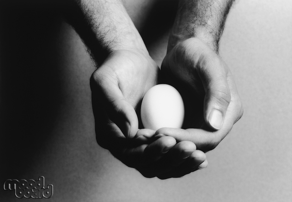 Man holding egg in cupped hands (b&w) (close-up)