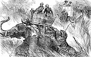 Edward, Prince of Wales (Edward VII from 1901) shooting tiger during his state visit to India in 1876. Engraving
