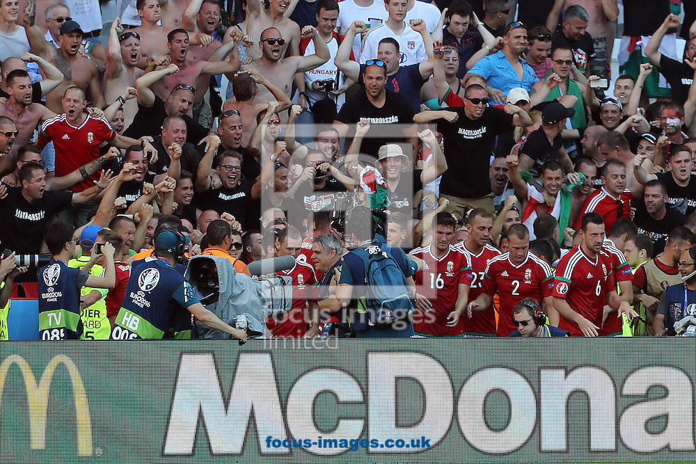 The Hungary players celebrate their side's 3rd goal with their fans during the UEFA Euro 2016 match at Stade de Lyons, Lyons<br /> Picture by Paul Chesterton/Focus Images Ltd +44 7904 640267<br /> 22/06/2016